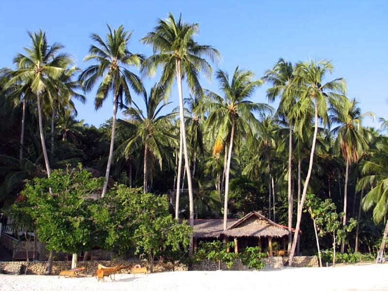 Easy Diving Beach Resort