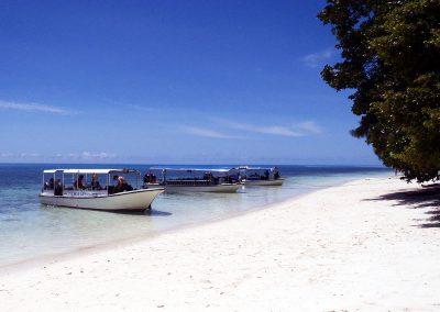 SAM's Palau